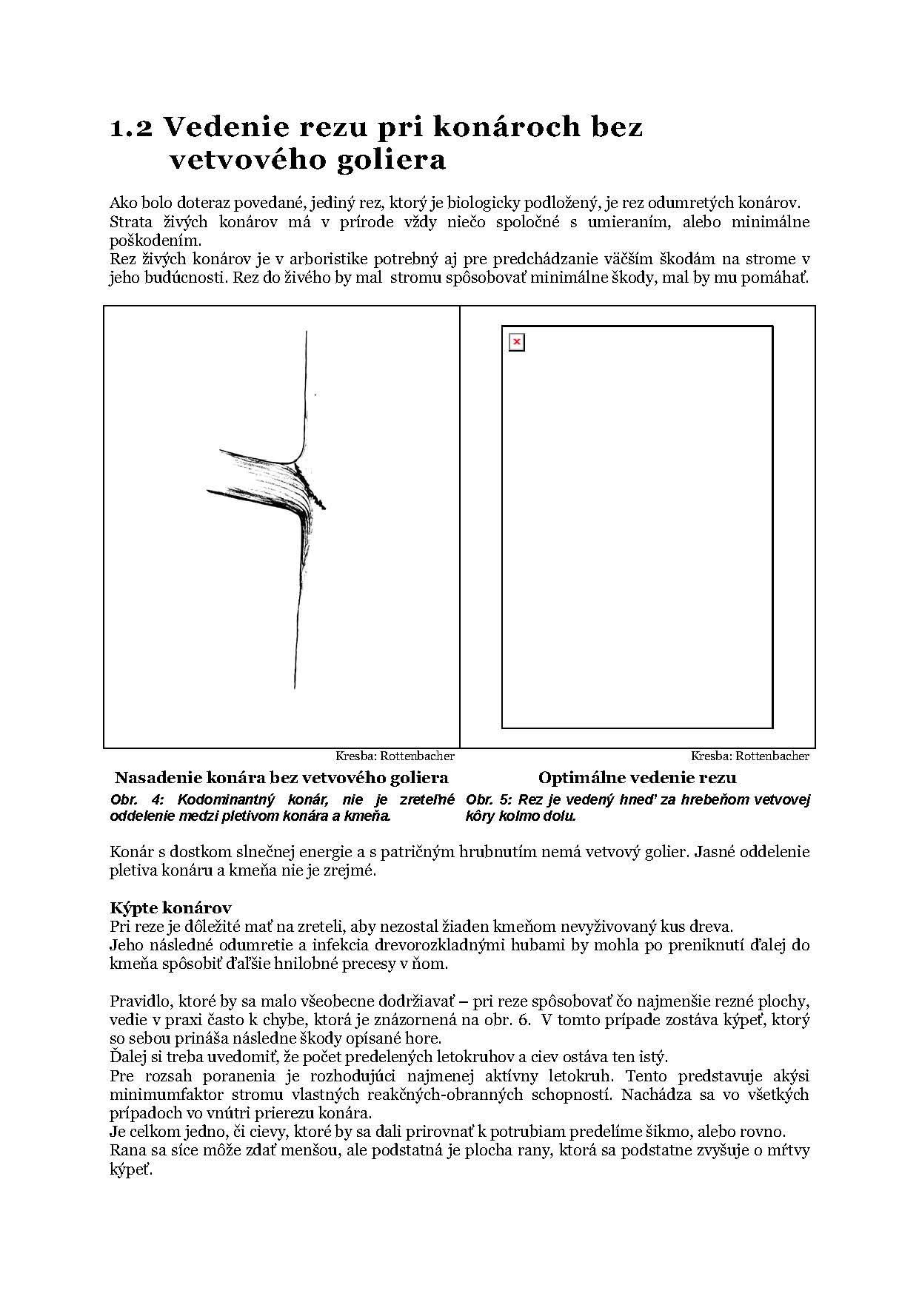 Zaklady_rezu_stromov_Flora_Page_5