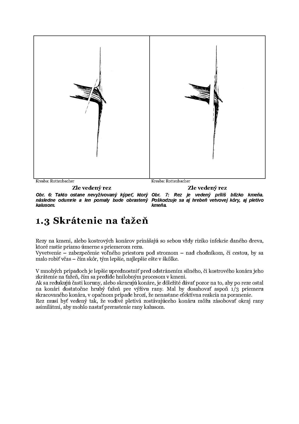 Zaklady_rezu_stromov_Flora_Page_6